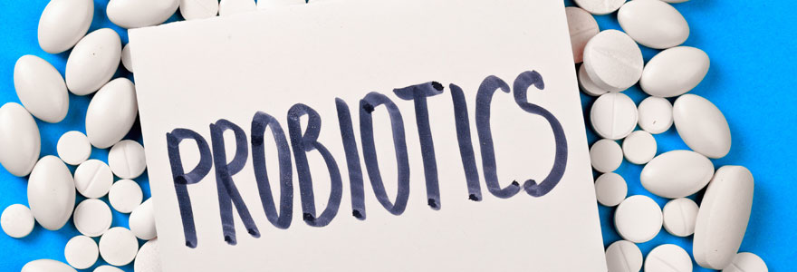 Achat de probiotiques naturels minceur