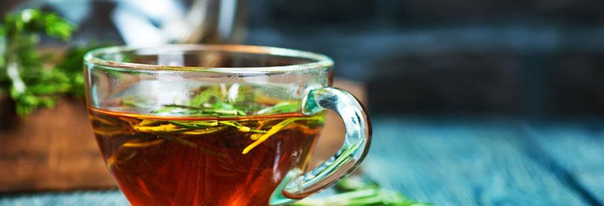 Infusions de thé en ligne