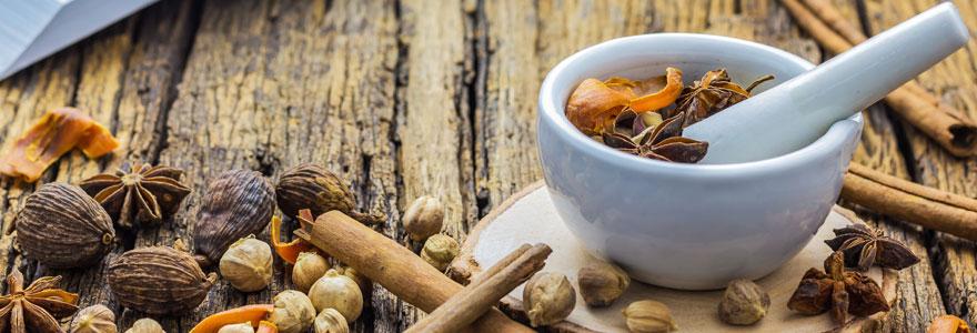 médecine traditionnelle